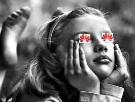 Мечты Huawei