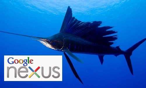 Google Nexus Sailfish